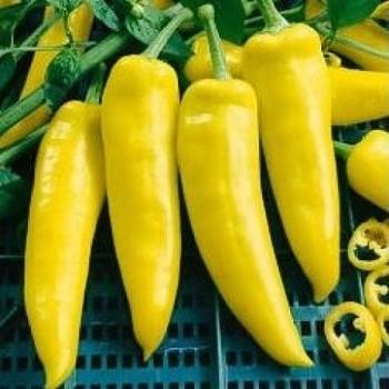 Hungarian Yellow Wax