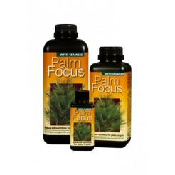 Palm focus 1 liter
