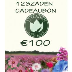 100 euro cadeaubon