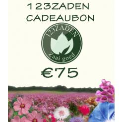 75 euro cadeaubon